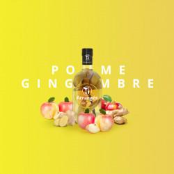 ti-arrangé-rhum-de-ced-rhum-arrange-pomme-gingembre-21-rhum arragé
